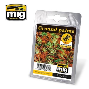CG8454 GROUND PALMS